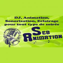 Logo Seb animation